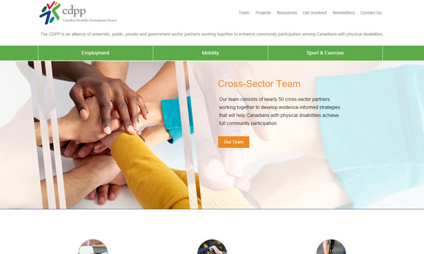 CDPP website design